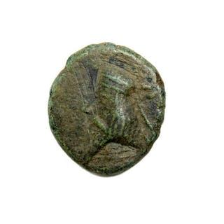 Ancient Bronze Coin, Phraataces (c. 2 B.C. A.D. 4) AE