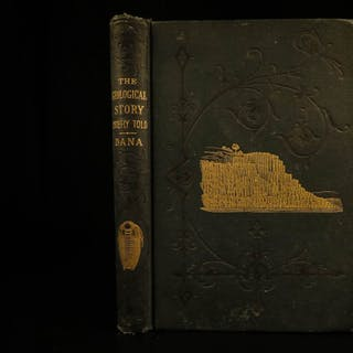 1875 1st ed GEOLOGY Geological Story Dana Science