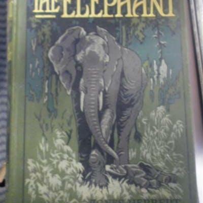 Elephants Eltringham, S. K.