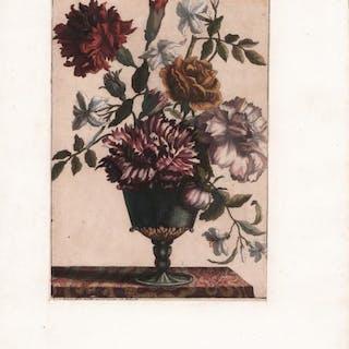 Barletta Louis Eustache AUDOT Barletta,Italia,Puglia