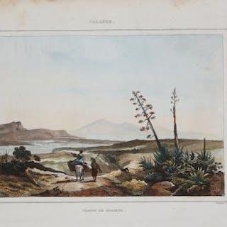 Plaine de Rosarno Napoleon SAUVAGE Calabria,Italia,Rosarno