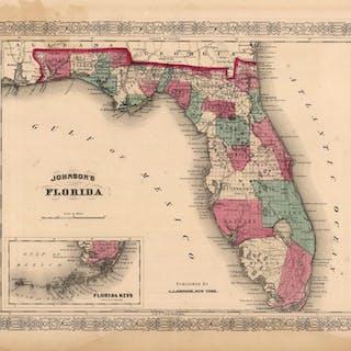 Johnsons Florida'