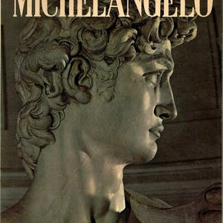 Michelangelo Painter - Sculptor - Architect - Art & Design