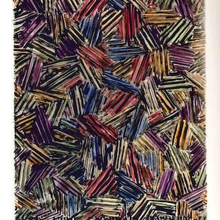 Jasper Johns: Drawings 1954-1984 Shapiro