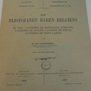 Die plistozänen Bären Belgiens