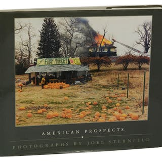 American Prospects Sternfeld, Joel Photography