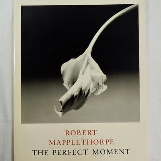 Robert Mapplethorpe: The Perfect Moment KARDON,Janet Art::Photography