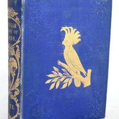 A Popular History of Birds Adam White NATURAL HISTORY,birds