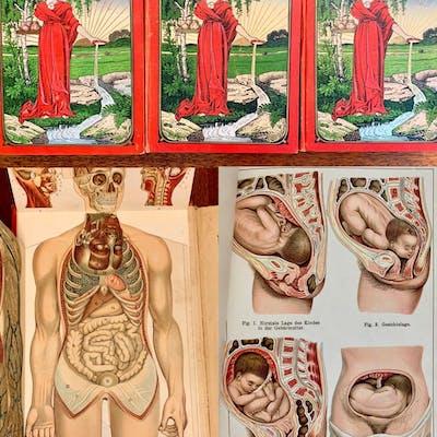 Das Neue Naturheilverfahren (Natural Healing) BILZ, Friedrich Eduard Movables