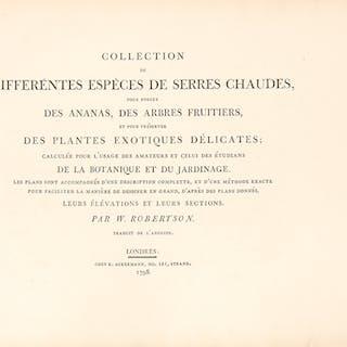 Collection de Differéntes Espèces de Serres Chaudes