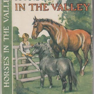 Horses In The Valley Fairfax-Lucy, Brian HORSE STORIES
