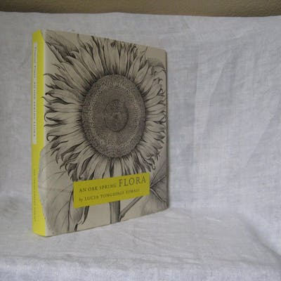 AN OAK SPRING FLORA: Flower Illustration from the...