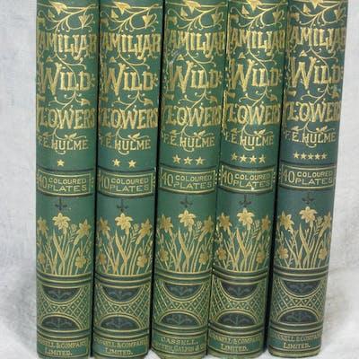 FAMILIAR WILD FLOWERS. Hulme, F. Edward.