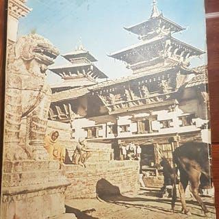 Tra giungle e pagode. Diario della spedizione nepalese 1952. Tucci,Giuseppe.