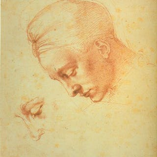 Michelangelo I disegni di casa Buonarroti Berti, Luciano Literature & Fiction