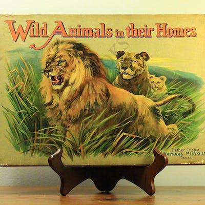 Wild Animals in their Homes CHILDREN'S LITERATURE | Barnebys