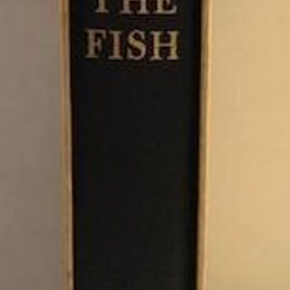 The Fly and the Fish John Atherton