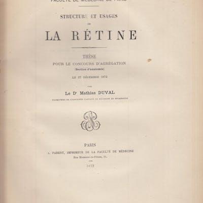 Structure et usages de la Rétine