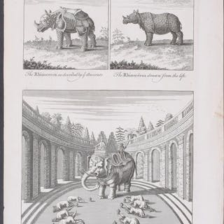 Rhinoceros, Elephant and Indian Monarch John Harris Americana,Antique Print,Map
