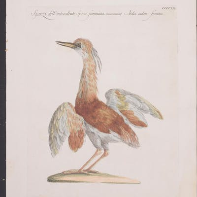 Heron Saverio Manetti