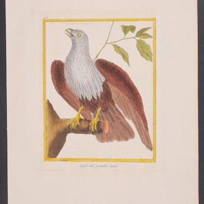 Eagle Francois Nicolas Martinet & Georges Louis Leclerc...