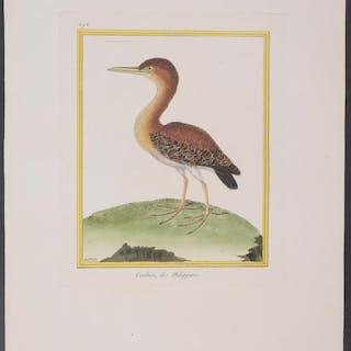 Pond Heron Francois Nicolas Martinet & Georges Louis...