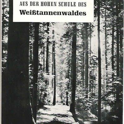 Aus der hohen Schule des Weißtannenwaldes
