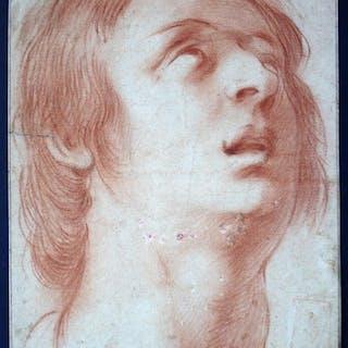 Head Study. (after) Dolci, Carlo: Original Zeichnungen