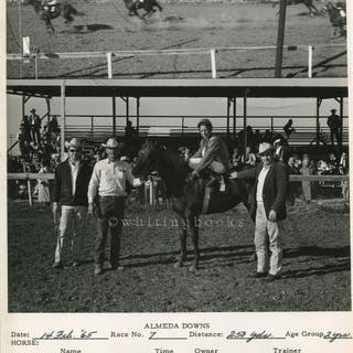 Almeda Downs Texas Horse Racing Track Photo 1965  Photo. 54a50ef75a8
