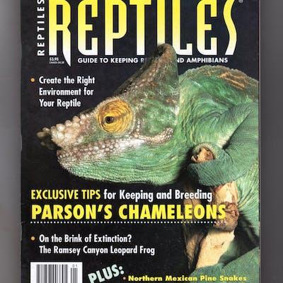 Reptiles Magazine - January