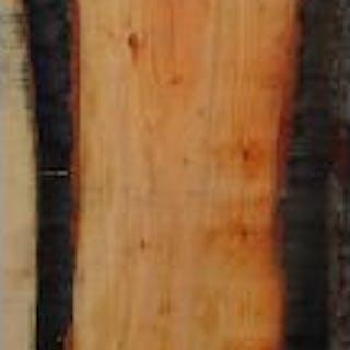 Display wood - Lebanese cedar