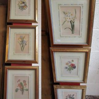 Set of six L/E botanical prints