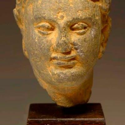 Gandharan Schist Stone Head of a Bodhisattva