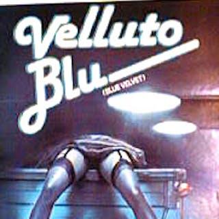 Blue Velvet / Velluto Blu