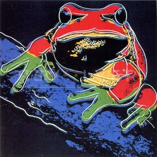 Pine Barrens Tree Frog 294 as Part of Andy Warhol's Larger Body of Work