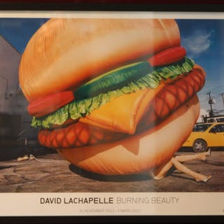 Burning Beauty Affische David Lachapelle