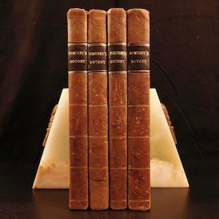 1790 1st ed English Botany James Sowerby Illustrated British Plants Flowers 4v