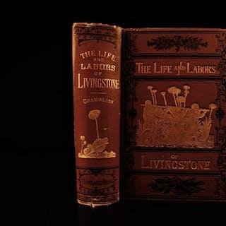 1875 Life & Labors of David Livingstone AFRICA Missionary Illustrated Chambliss