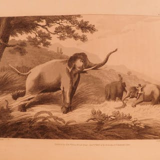 1808 1st Oriental Field Sports INDIA Big Game Hunting Bengali Elephants 2v SET