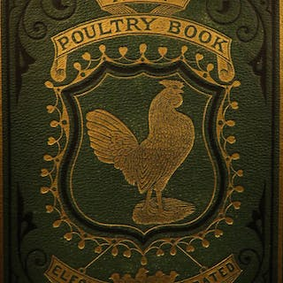 1871 1ed Burnham New Poultry Book Chicken Breeding Turkey Illustrated Farming