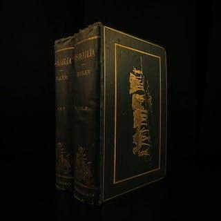 1874 1st ed ISMAILIA Central Africa Slave Trade SUDAN Egypt Illustrated