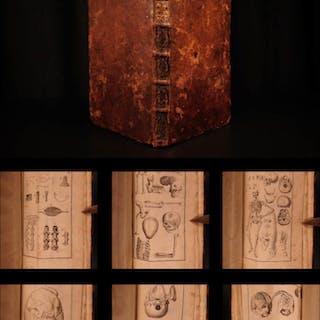 1741 FAMOUS Johann Kulmus Anatomy Surgery Medicine Illustrated JAPAN China