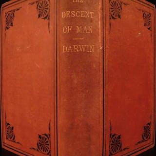 1877 Charles Darwin Descent of Man Evolution Natural History Monkeys Science