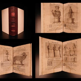 1672 Moscardo Museum of Curiosities Illustrated Oddities Archaeology