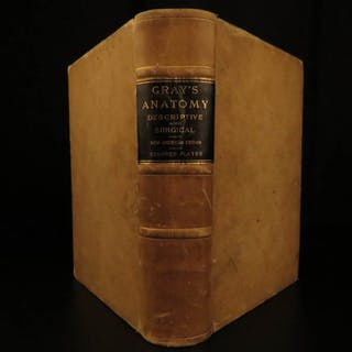 1897 Henry Gray GRAY'S ANATOMY Human Surgery Illustrated Medicine Physician