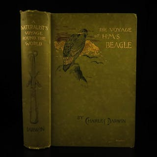 1890 1st Illustrated ed Charles Darwin EVOLUTION HMS Beagle Natural