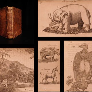 1787 1ed 300 Animals Bestiary Zoology DRAGONS Mermaids Beasts Whaling Boreman