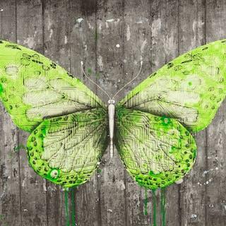 Ludo (b.1976) e-Lepidoptera, Ludo (b.1976), e-Lepidoptera