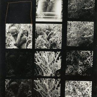 Norman Parkinson (1913-1990) Parkinson's Garden in Winter, Norman