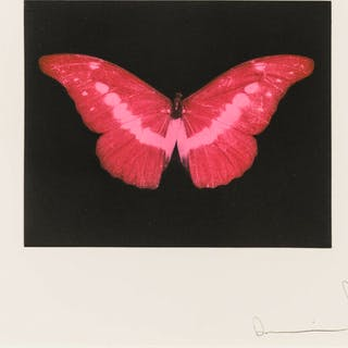 Damien Hirst (b.1965) To Lose (Red Butterfly), Damien Hirst (b.1965)